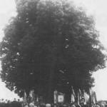 Fahnenweihe zum 75-jährigen Gründungsfest der FFW Kirchberg bei der Arndorfer Linde (1954)